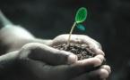 NZ Super Fund Turns Its '$14 Billion Global Passive Equity Portfolio' To Low Carbon