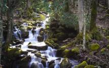 Duke Energy Supports Water Stewards Protecting The Waterways of Carolina