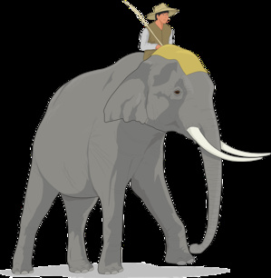 Business Case Should Be Presented Like Riding On An Elephant