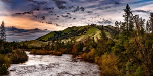Private & Public Sectors Come To Save The Forests Of California To Secure 'Water Future'