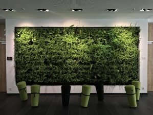 Capturing The 'Lush Green Landscapes' In Workspace Design