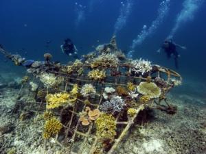 The U.N takes steps to govern the High Seas