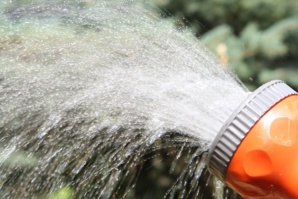Intelligent Irrigation System Bags The First Prize