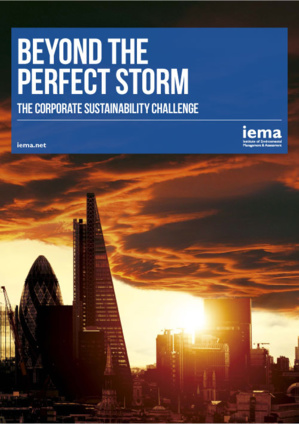 IEMA's Report Holds Corporate Sustainability Under The Lime-Light