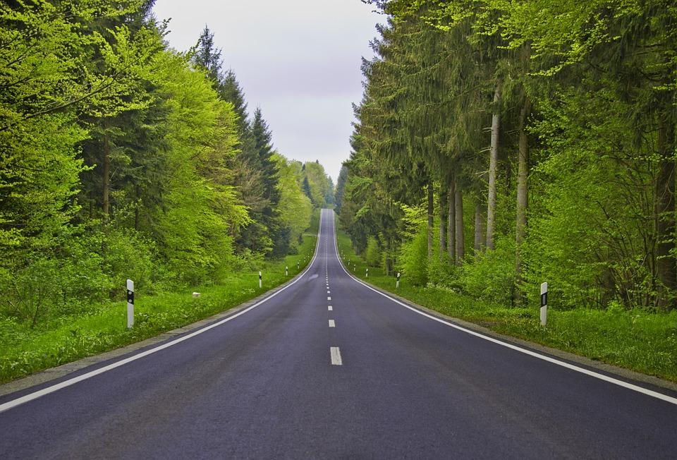 GDOT Wins The 'National Pollinator Roadside Management Award'