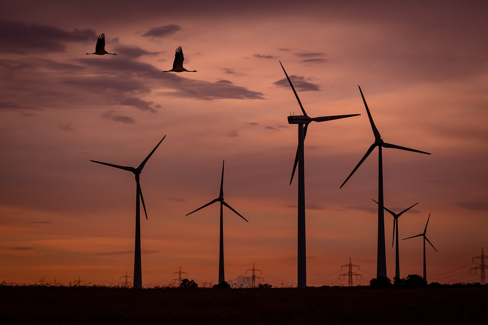 Investments Rise & Costs Falls In The Renewable Sector