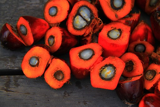 Kraft Heinz To Source Palm Oil In Sustainable Manner