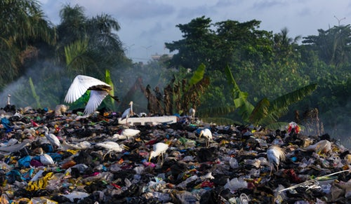 'A Wake-up Call' To End Plastic Waste Dilemma In The Wake Of China's Import Ban