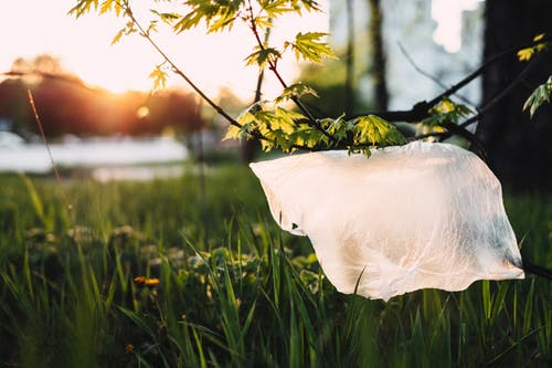 Australia Slashes 80% Of Its Plastic Bags Consumption In Ninety Days