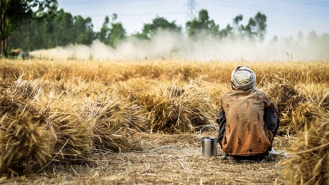 Industries Halted But AB InBev Supported Smallholder Farmers Amid COVID-19 Pandemic