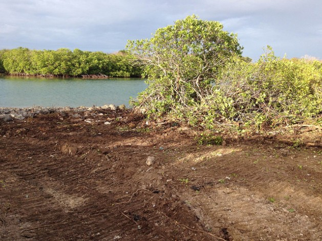 Chinese Developers threaten Antigua's Marine Ecology