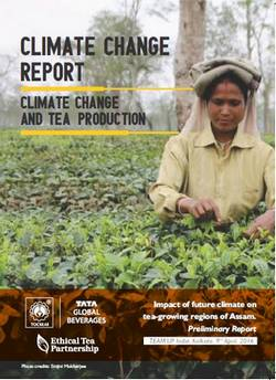 Tata Global Beverages Presents a Future Climate Projection On Tea Production