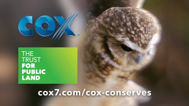 Nominees Are Invited For 'Cox Conserves Heroes' Awards