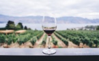 Sustainability Through The Eyes Of The Largest Vineyard Business' C.E.O In India