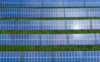 Japanese Ruling Party Urge For Green Investment Incentives In Draft Plan