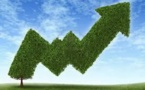 China & Corporates - A New Height for Green Bonds