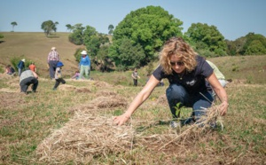 'Bring on Spring' Built On Philanthropic Collaboration